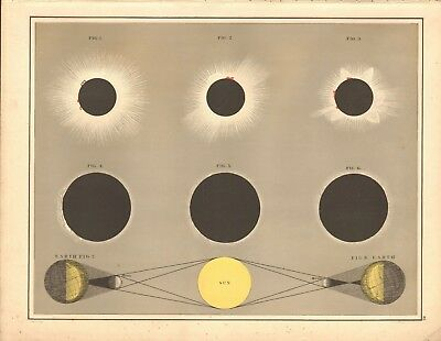 1887 Large Antique Astronomical, Eclipses of the Sun