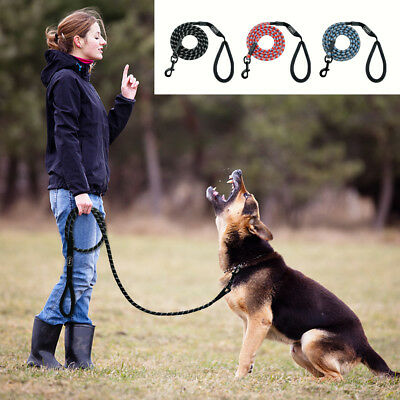 Reflective Rope 6 feet Dog Leash with Soft Handle for DOgs Climbing Walking US
