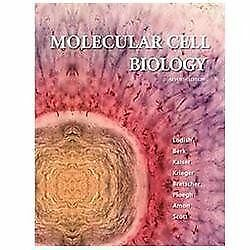 Molecular Cell Biology by Arnold Berk, Harvey Lodish, Angelika Amon, Chris A....