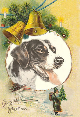 Vintage Pointer Dog Portrait & Nast Santa - LARGE New Blank Christmas Note Cards