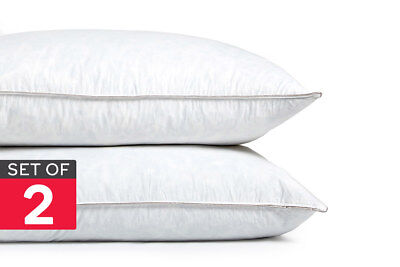 Gioia Casa Twin Pack Feather Pillows (1.3kg/Medium Feel)