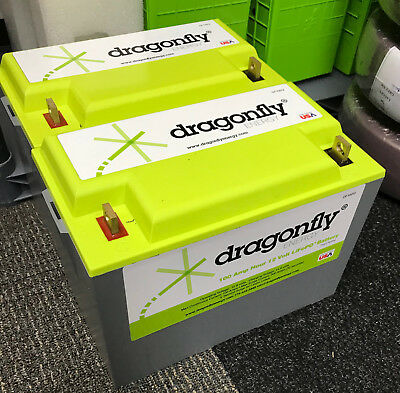 Dragonfly Energy Lithium Ion Deep Cycle Battery