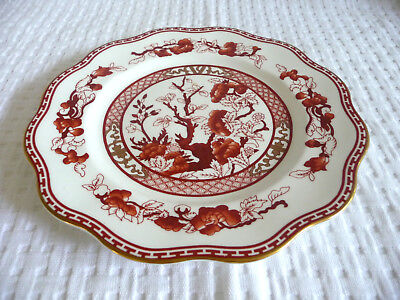 """* COALPORT Bone China INDIAN TREE CORAL 9"""" Scalloped LUNCHEON PLATE * Excellent"""