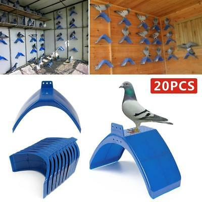 20X Dove Rest Stand Frame Pigeon Perches Roost Bird Supplies Grill Dwelling JL