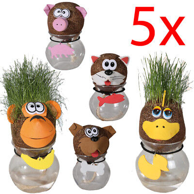 5 X Animal Grass Head Diy Plant Pot Head Doll Education Eco Kit Gift Fun Toy New