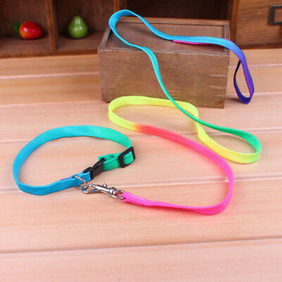 Adjustable Pet Small Dog Puppy Cat Rabbit Kitten Nylon Harness Collar Leash Lead