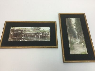 2 Antique Hand tinted Photographs Chinese Asian Vintage Framed