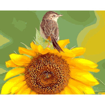 DIY Oil Painting Pain By Numbers Kit on Canvas Wall Art Pictures -bird&sunflower