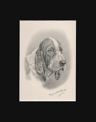 """Basset Hound Dog Portrait by M. Kirmse Limited Edition Print 1938  8x10"""" Matted"""