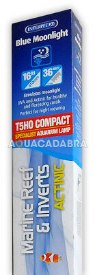 Interpet Blue Moonlight Actinic T5 Ho 36W Compact Light Tube River Reef Rr94
