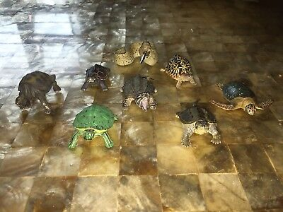 Kaiyodo Yujin Colorata Gashapon Turtle Tortoise Lot Set With Giant Moray Eel