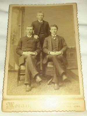 Vintage Old 1890s Cabinet Photo of 3 Handsome Men Man from RED OAK Iowa GREAT
