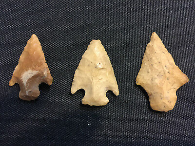 AUTHENTIC (3) AUSTIN,TEXAS ARROWHEADS FROM A COLLECTION         stock#4b