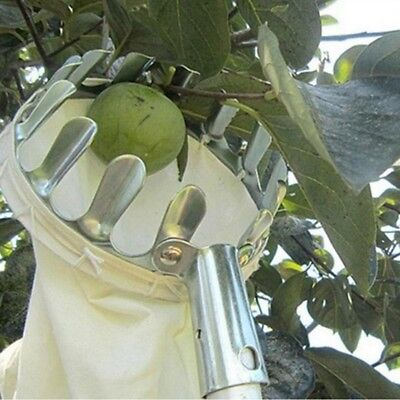 Convenient Horticultural Fruit Picker Gardening Apple Peach Picking Tools WS