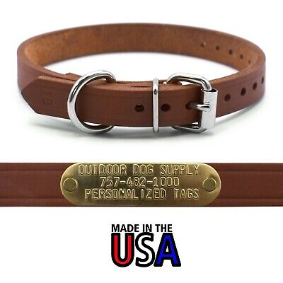 """3/4"""" Leather D Ring Dog Collar Strap & Custom Brass Name Plate Id Tag"""