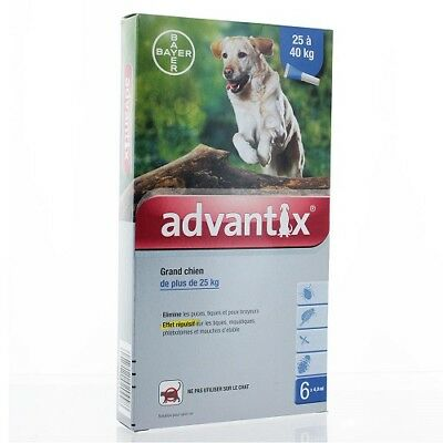 ADVANTIX GRAND CHIEN 25-40kg 6 pipettes