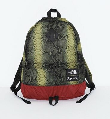0621bf6db SUPREME X THE North Face Snakeskin Lightweight Day Pack Green Backpack TNF
