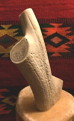 Large Natural Deer Antler Sculpture Taxidermy Crafts: Buttons, Jewelry, Bolos