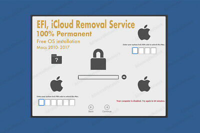 EFI Password Lock Removal Service for MacBook Air Models 2011-2017 Permanent100%