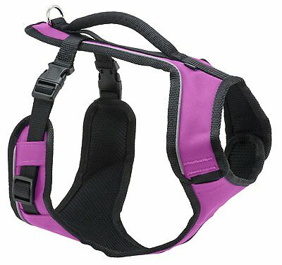 EasySport Harness Large Pink for Dogs
