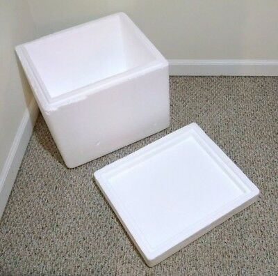 """Insulated Styrofoam Shipping Container - 18""""x16""""x18"""""""