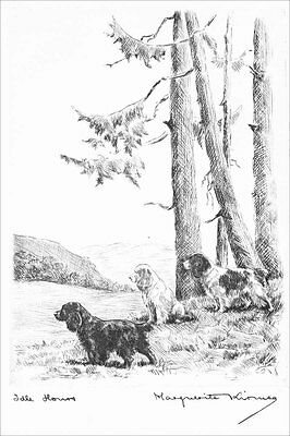Cocker  Spaniel Dogs  Marguerite Kirmse 1923  8 New Large Note Cards