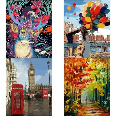 DIY Paint By Number Kit Digital Oil Painting Canvas No Framed Home Wall Decor AU