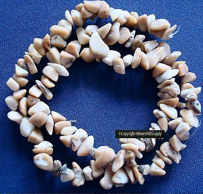 """Tibetan coral fossilized natural bamboo medium chip beads 16"""" st beads BS063"""