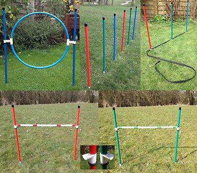 Dog agility Basic Starter set in Colour by jessejump agility