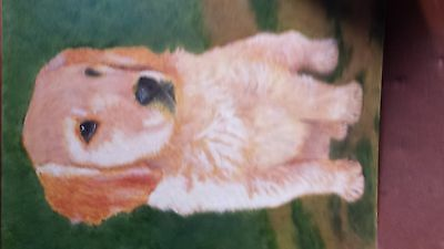 Original Puppy  DOG  OIL PAINTING  signed local artist