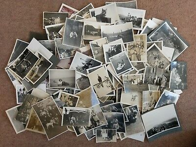 Job Lot Bulk Collection 100 Vintage Old Photos Animals Cats Dogs Horses Pets