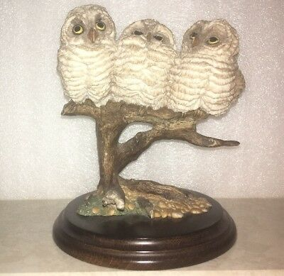 "Rare Country Artists ""BABY OWL GROUP"" CA155 VGC"
