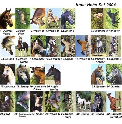 Lot Of 29 Horse Postcards Irene Hohe Different Breeds Most Are Named