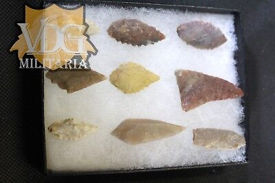 Set of 9 Neolithic Arrowheads from Egypt in Riker Case