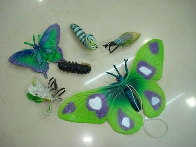 10Sets X 6pcs Collectable Butterfly World Toy Assorted
