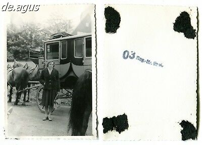 Vintage Photo circa 1950s young Woman, horse drawn carriage