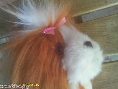Russet Brown & White Shih Tzu Puppy Dog with Realistic Eyes Nose