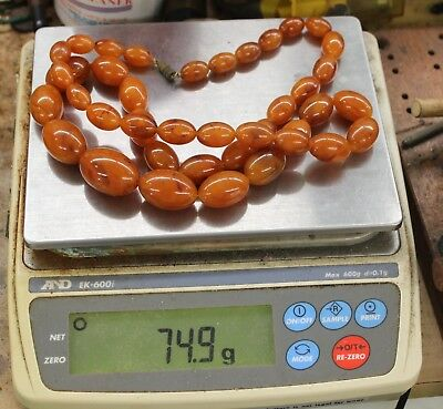 Fine Old Natural Butterscotch Baltic Amber Graduated Necklace 74.9 Grams