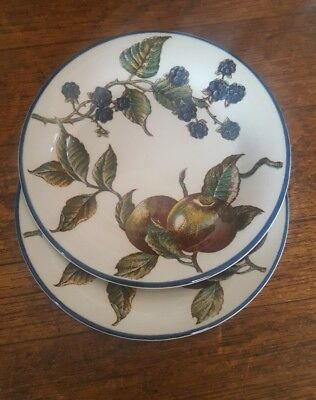 2 Staffordshire Tableware Autumn Fayre Bread and Butter Side Plates