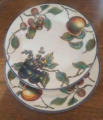 2 Staffordshire Potteries Autumn Fayre Dinner Plates
