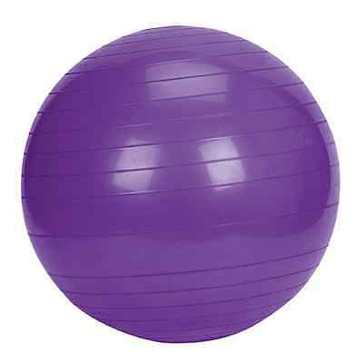 The Miracle Box Birth / Exercise Ball Purple 75cm