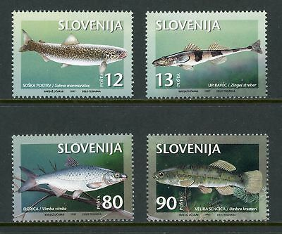 Slovenia Scott #287-290 MNH Endangered Fish FAUNA CV$4+