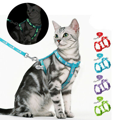 Kitten Cat Walking Harness Strap and Leash Collar Adjustable Reflective for Pets