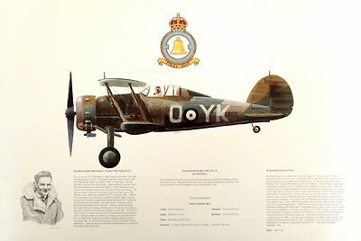Ap12 Beautiful Aviation Print Picture Profile Gloster Gladiator Mkii L8011 Yko