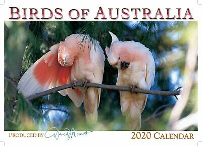 2019 Wall Calendar - Birds of Australia by David Messent Photography