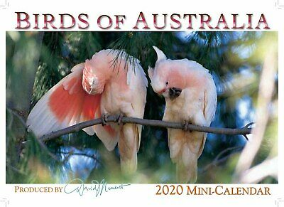 2019 Mini Calendar, Birds of Australia by David Messent Photography