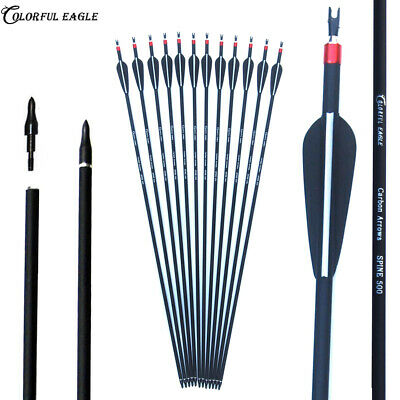 """Archery Carbon Arrows Hunting 28/30/31"""" SP500 with Replaceable Arrowhead for Bow"""