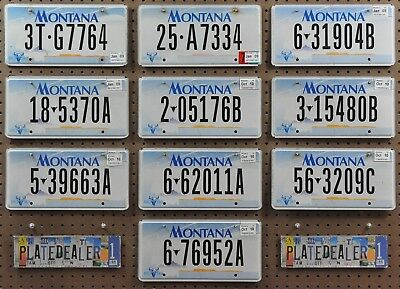 10 MONTANA 2000 Base Flat License Plates Tags Art Sign Man Cave GENERIC BULK LOT