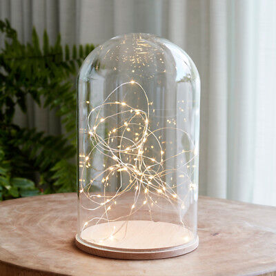 Minimal Glass Dome 31cm with warm white Micro Fairy Lights Battery by Lights4fun