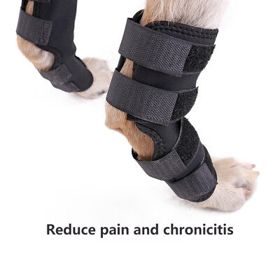 Pet Dog Leg Brace M/L Size Protector Hock Knee Pet Dog ACL Therapeutic Hind